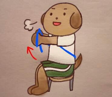 ゴムチューブを使った胸肩腕のトレーニング②