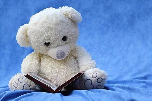 Book and teddy bear