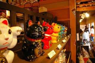 お店に並んでいるさまざまな色の招き猫