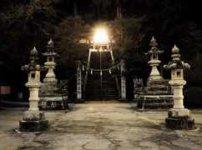ライトアップされた神社