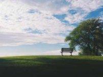 草原、青空、ベンチ