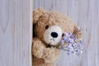 花束を持ってひょっこり顔を出すくまのぬいぐるみ