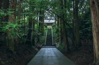 仏教寺院の山道
