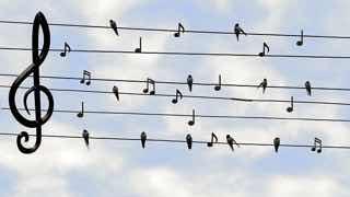 電線と小鳥で楽譜になっている