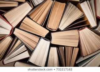 縦にたてられた小説を上から眺める